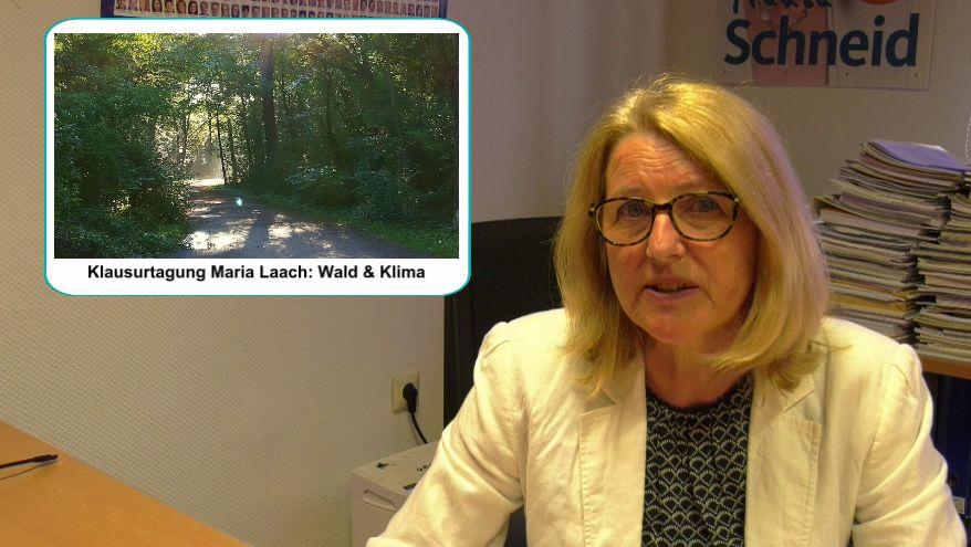 VIDEO: Marion Schneid Informiert – Klausurtagung Maria Laach Themen Wald & Klima, neues Kita-Gesetz für Rheinland-Pfalz, Ausblick