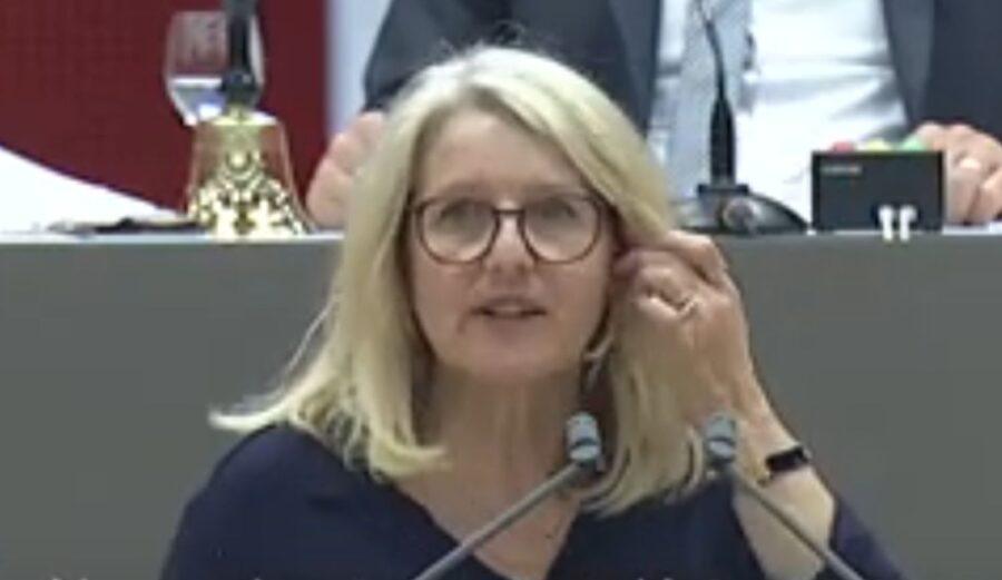 Rede von Marion Schneid: 1. Beratung: Neustrukturierung der Universitätsstandorte und Leibniz-Zentrum für Psychologische Information und Dokumentation (mit Video)